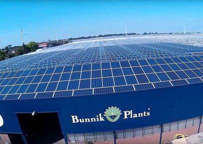 Bunnik Plants stapt over op zonne-energie