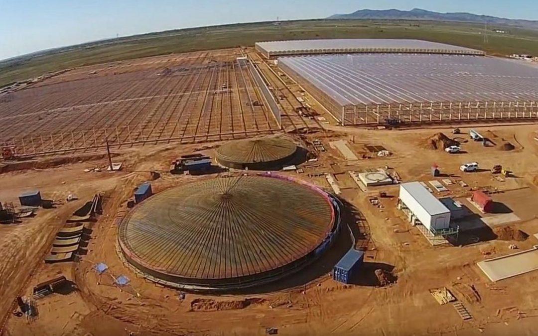 Van der Hoeven bouwt nieuwste uitbreiding Sundrop Farms