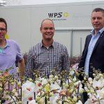 Piet Vijverberg in zijn phalaenopsis kwekerij