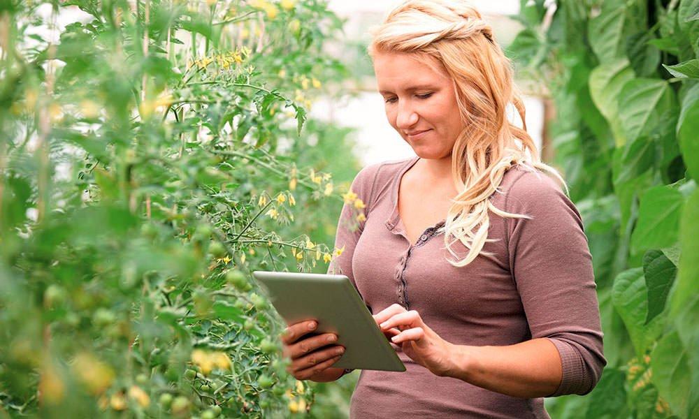 Dame met tablet in tomatenkas