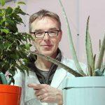 Techniek helpt mensen zonder groene vingers Innovatieve, zelf watergevende bloempot ontzorgt consumenten