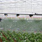 Wageningen University & Research (WUR) onderzoekt de motivatie van boeren en telers om te minderen in het gebruik van milieubelastende gewasbeschermingsmiddelen.