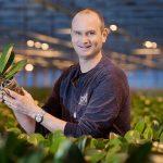 Vitale plant begint bij weerbare bodem Biostimulanten geven microleven duwtje in de rug