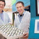 Een nieuwe, innovatieve machine bewijst dat automatisch sorteren in groenteplanten zeker toekomst heeft.