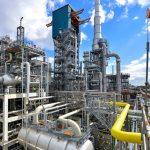 'Tuinders in ernstige problemen door gebrek aan CO2'