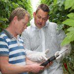Ruime meerproductie tomaat door nauwkeurig meten in het substraat