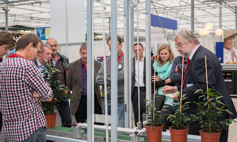 Ficus-robot voor automatisch opbinden rijp voor markt