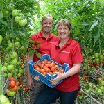 'Plezier in werk terug door bioteelt, workshops en huisverkoop'