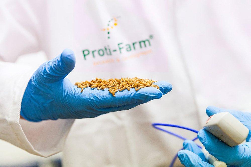F&A Next brengt food & agri start-ups en investeerders bij elkaar