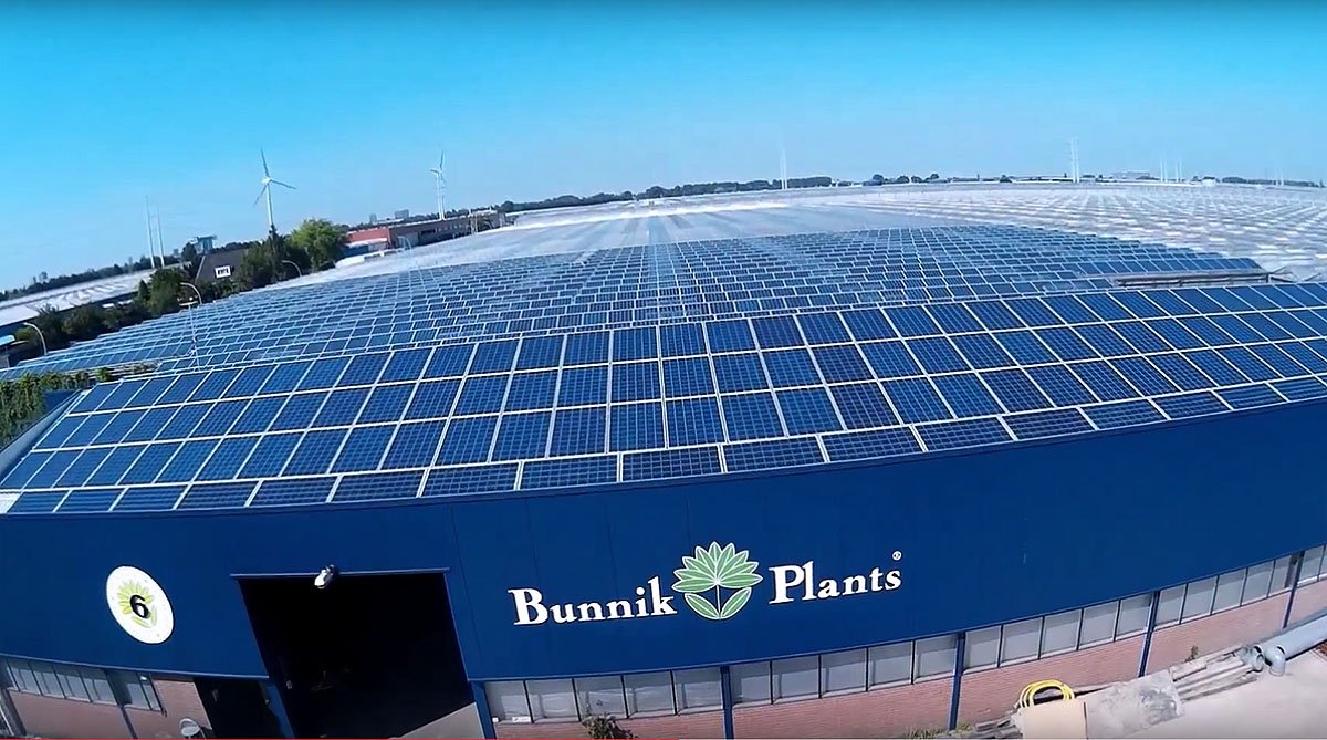 tuinbouw, innovatie, glastuinbouw, industrie, energieopwekking, duurzaam, zonnepanelen, zonne-energie, elektriciteit, Bunnik Plants, SolSolutions, restwarmte, CO2, OCAP, solar
