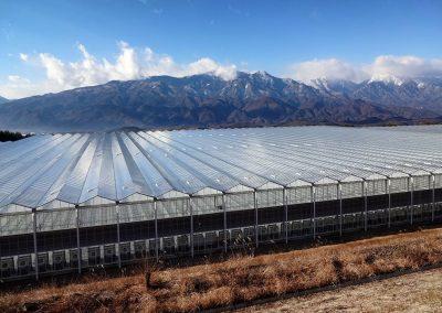 tuinbouw, innovatie, glastuinbouw, technologie, leverancier, KUBO, Ultra-Clima, tomaten, kas, aardbevingsbestendig, Japan, Agrimind, Kagome, Daisen Co.