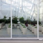 tuinbouw, industrie, glastuinbouw, onderzoek, innovatie, zelf-watergevende pot, Parrot Pot, smart plant sensor, Wageningen UR, Parrot Flower Power