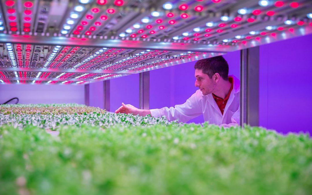 Priva systemen regelen klimaat en watergift in GrowWise Center