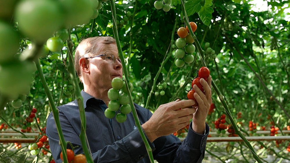 Priva brengt visie topondernemers tuinbouw in beeld