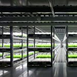 tuinbouw, innovatie, glastuinbouw, gecontroleerde teelt, urban farm, city farm, vertical farming, Spread Co., Vegetus, slateelt, robots, led-verlichting, recirculatie, Japan, Kyoto