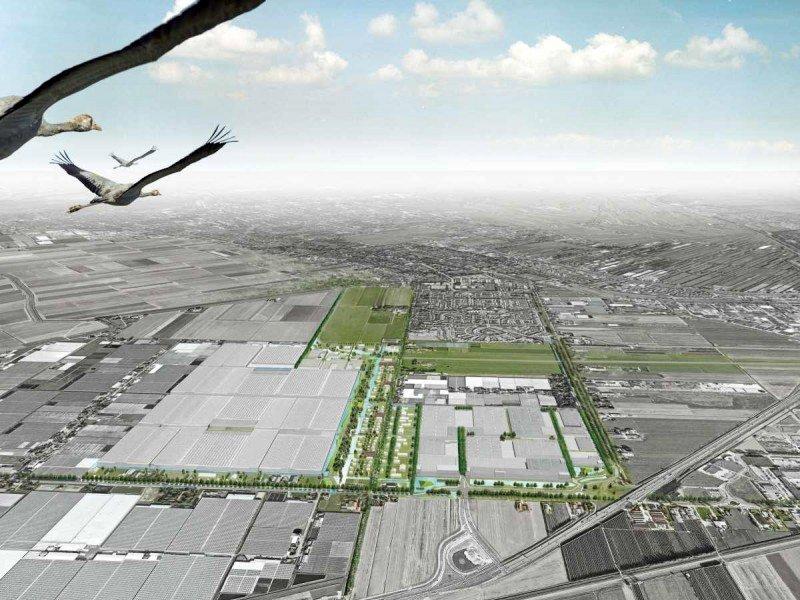 Wayland Developments, Warmtebedrijf Rotterdam, warmterotonde, warmtenetwerk, tuinbouwlocatie, Glasparel, rest-CO2, restwarmte, glastuinbouw, duurzame energie