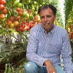 'Tussenlichtmodules geven positief effect op trosontwikkeling en bloeisnelheid'