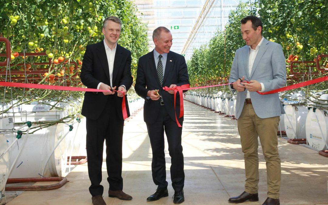 Eerste 20 hectare van Sundrop Farms officieel geopend