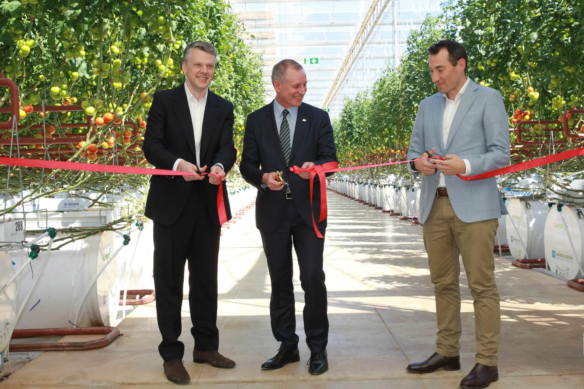 Met het doorknippen van een lint opende vandaag de Zuid-Australische premier Jay Weatherill de nieuwste tomatenkas van Sundrop Farms in Port Augusta, samen met CEO Philipp Saumweber en Chris Nicholas van afnemer Coles.