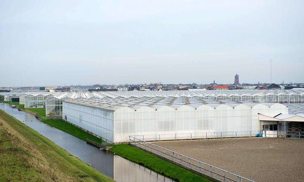 Wageningen Economic Research ontwikkelt regionale energiemonitor