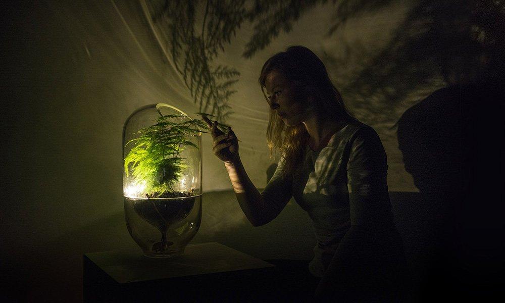 Living Light groene start-up