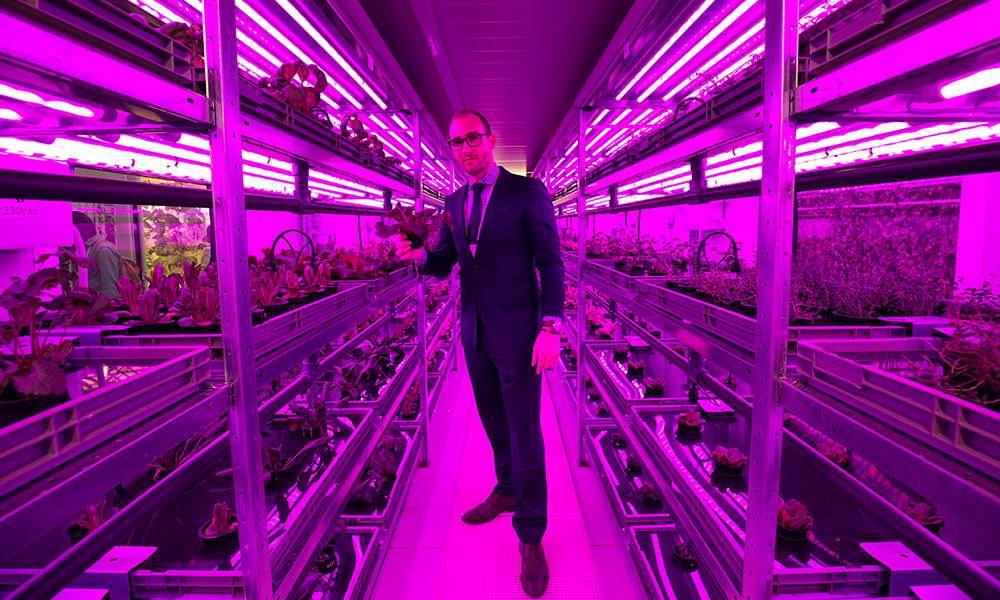 Vertical Farming komt er onherroepelijk aan, vraag is waar en wanneer