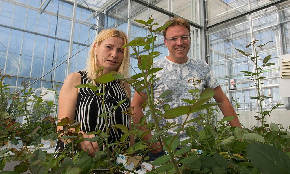 Ada Leman en Gerben Messelink in rozenkas.