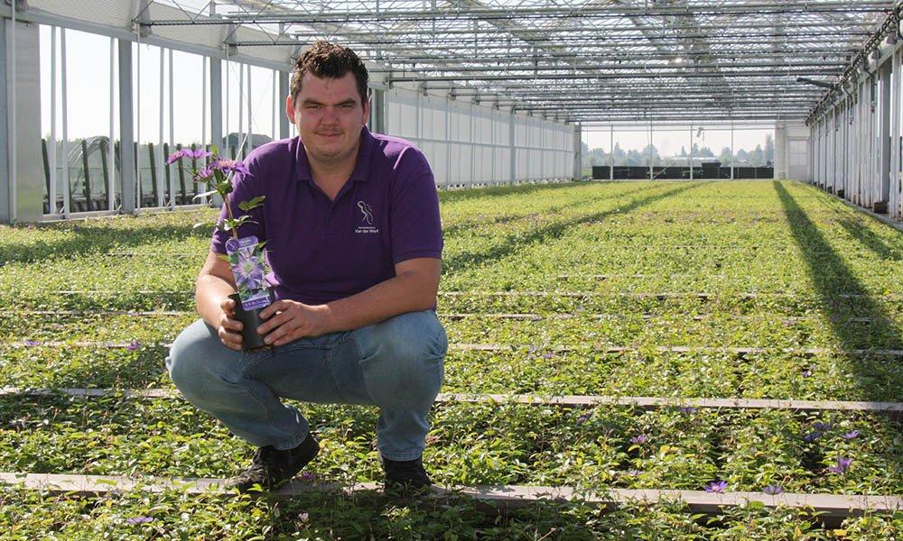 Clematis-kweker Michel van der Werf in zijn kwekerij in Boskoop.