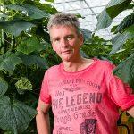 Marco Zuidgeest uit Delfgauw in de komkommerkas.