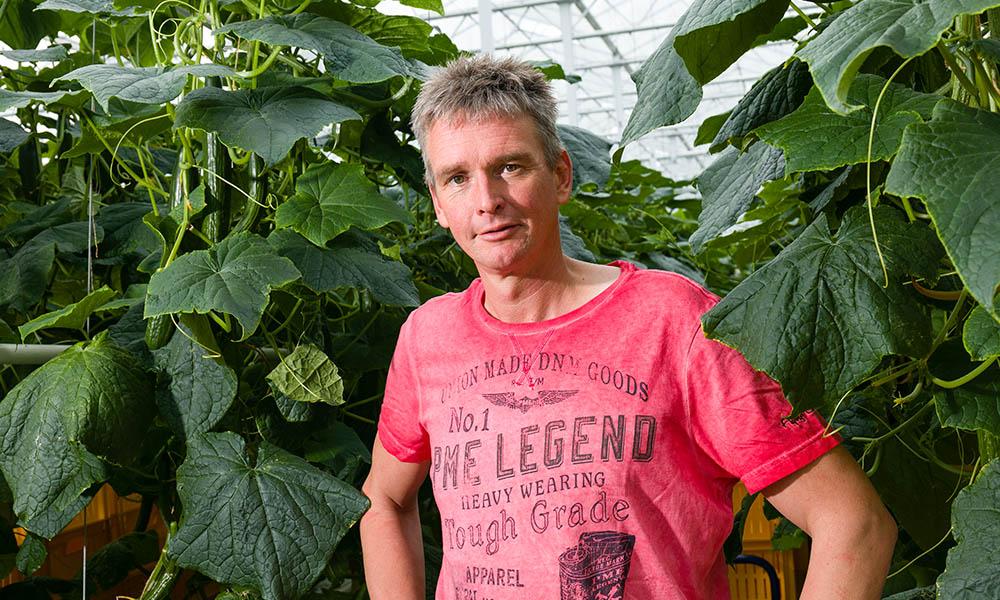 Ketenproject kleine kern komkommer vraagt om intensieve samenwerking