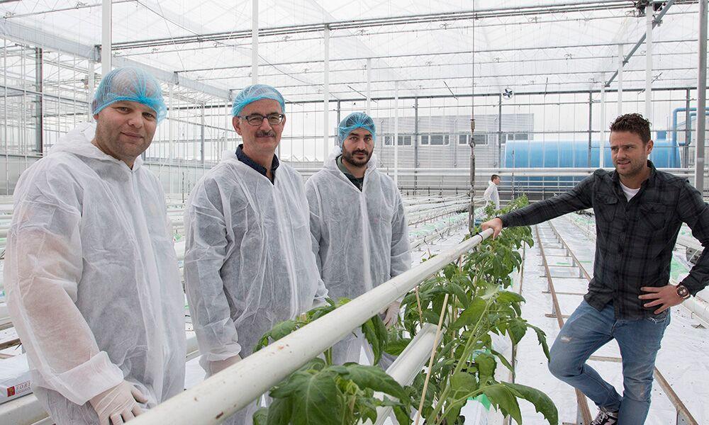 Planten via wortels sturen naar vegetatieve of generatieve groei