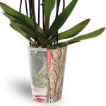 Undrcover is een effectief waterbuffersysteem voor kamerplanten.
