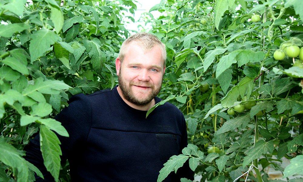 Acht jaar geleden begon Ties Verbaarschot als 21-jarige met het telen van komkommers en herfsttomaten.