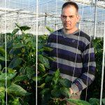 Paprikateler Geert Bouten heeft een mini-master ondernemerschap gevolgd. Het ondersteunt hem bij zijn plannen voor een eigen keurmerk.