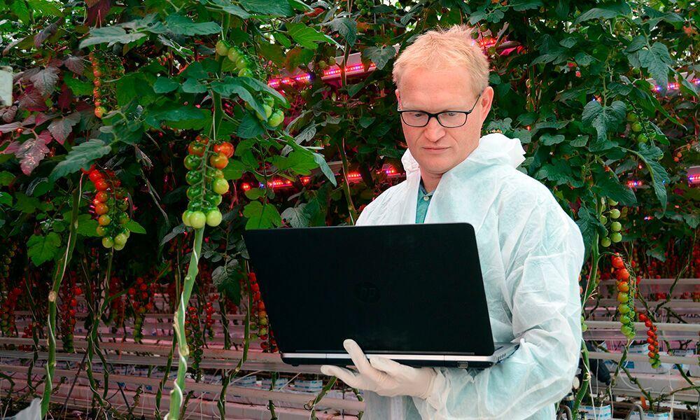 Er is een nieuw systeem ontwikkeld om gegevens van klimaat, instellingen, oogst en gewasontwikkeling te combineren op één dashboard.