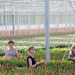 Kas Groeit geeft medewerkers in de tuinbouw loopbaanvouchers voor doorgroeien of specialisatie.