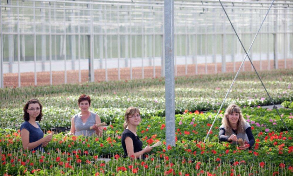 Kas groeit en Mobiliteitscentrum Glastuinbouw samen verder