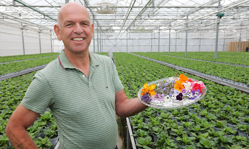 Peter van Wijgerden uit Bruchem: 'Eetbare bloemen in de pot, met verhaal en recept'