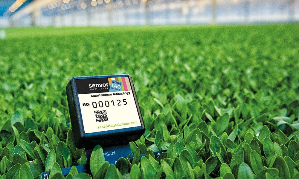 Moet ik water geven en hoeveel bemesting hebben mijn planten nodig? Met de SensorTagSolutions sensoren krijgt de teler direct antwoorden op deze vragen.