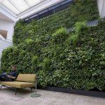 Luchtzuiveringssysteem met planten van Cloud Garden genomineerd voor innovatieprijs