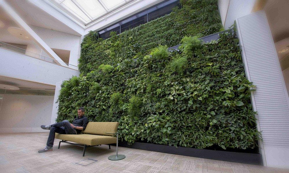 Luchtzuiveringssysteem met planten genomineerd voor innovatieprijs