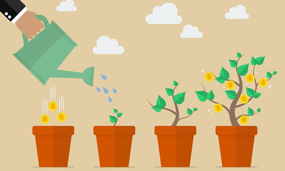 tuinbouw start-ups