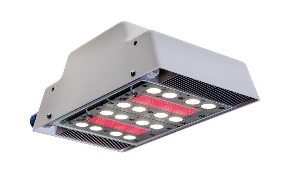 Qwestland introduceert derde generatie LED-lichtbron