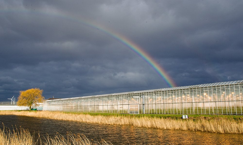 Vanuit de verplichtingen van de Europese Kader Richtlijn Water moet het oppervlaktewater uiterlijk in 2027 voldoen aan de Europese normen.