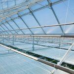Het strategisch onderzoek in de tuinbouw heeft nog geen structurele financiering, vanwege het wegvallen van het PT.