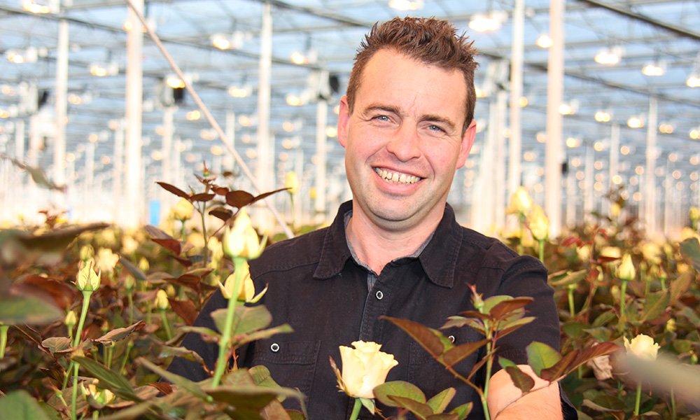 De combinatie van plantmonitoring en een geavanceerde sturing helpt Van de Berg Roses om de watergift beter af te stemmen op de behoefte van de plant.