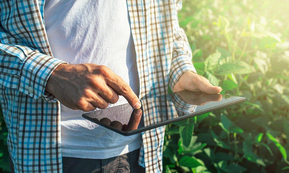 Laat Nederland kansen liggen in de innovatie van de tuinbouw wat betreft het gebruik van IoT en big data in de eerste schakels van de tuinbouw? Dat onderzoekt adviesbureau Berenschot op dit moment samen met student Rick Bakker