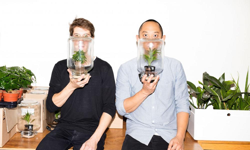 Het Let it Grow festival wil mensen laten zien dat bloemen en planten het leven in de stad beter maakt.