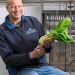 Biologisch dynamisch groenteteler Rob van Paassen spreekt van een welkome inhaalslag, omdat de vraag harder was gegroeid dan het binnenlandse aanbod.
