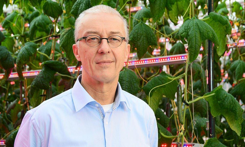 Vertical farming lost het wereldvoedselprobleem wel even op